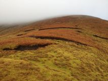 Bogland on southern ridge