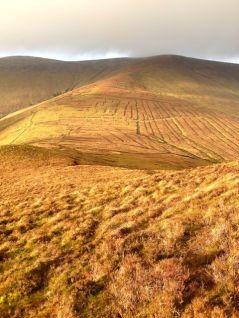 The ridge down from Lyragoppal.