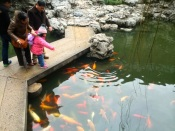 Yu Gardens 2