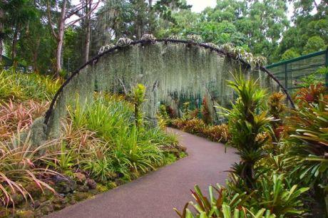 Singapore Botanic
