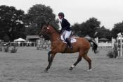 Camphire Horse Trials, Co. Waterford