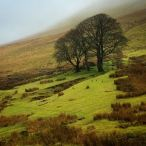 Galtee Mountains, Co. Tipperary