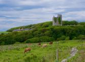 Ballinalacken Castle, Co. Clare